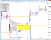 TPChart MarketProfile NinjaTrader chart right click menu options specific to TPOChart